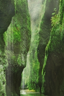 The beauty of the Oneonta Gorge within the Columbia River Gorge Oregon