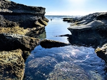 The Beauty of Tidal Erosion San Diego California