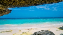 The Bermuda Shore