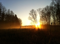 The best photo Ive ever shot with my iPhone  Sweden Nykping