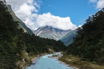 The best place Ive ever been Yumthang Valley North Sikkim India