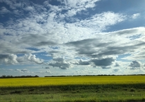 The Big Skies of Saskatoon Saskatchewan