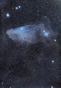 The Blue Horsehead Nebula in Scorpius taken by me from Al Sadeem Observatory in Abu Dhabi UAE