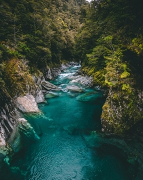 The Blue Pools of New Zealand could not be a more incredible color
