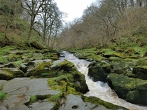 The Bolton Strid Yorkshire - A Stream that Swallows People