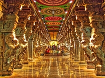 The breathtaking Pillar Hall in the Meenakshi Temple in MaduraiIndiaThe mandapam contains  delicately carved pillars Most of them depict mythological chimeras amongst others creatures with elephant heads and lion boddiesThe liquid impression results from