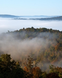 The Buffalo River Valley AR on a foggy morning