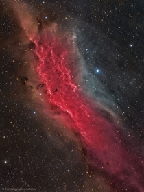 The California Nebula NGC  is an emission nebula located in the constellation Perseus It is so named because it appears to resemble the outline of State of California on long exposure photographs