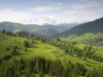 The Carpathian Mountains Romania