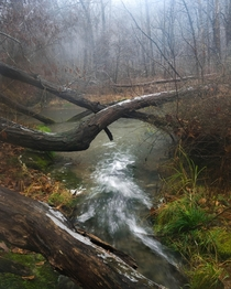 The caves stream finding its way to the river Missouri US