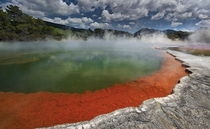 The Champagne Pool so named because the water bubbles due to high carbon dioxide content Wai-O-Tapu New Zealand