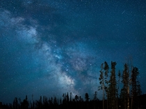 The clearest Ive ever seen the milky way taken from my backyard in Big Sky Montana