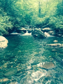 The clearest river water Ive ever seen nestled away running through The Great Smoky Mountains