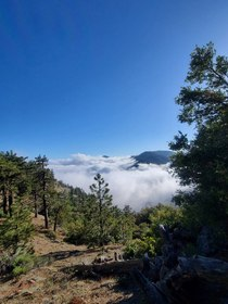 The clouds in the Angeles National Forest were too stunning all weekend Islip Saddle section of the PCT CA