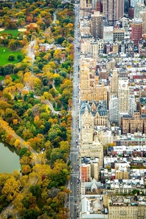 The collision of two worlds in NYC