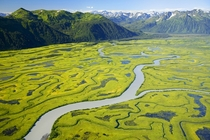 The Copper River Delta Alaska -