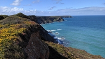The Cornish coast
