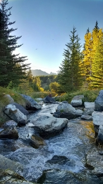 The creek that drains Johnson Lake just outside Banff Alberta OC x