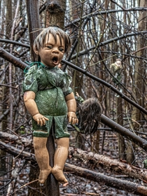 The creepy little forest of dolls in Germany