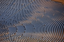 The Crescent Dunes Solar Energy Project in the vast deserts of Nevada