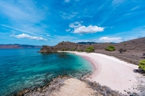 The crystal clear waters and Pink Sand Beach of Komodo Islands Indonesia The color is due to Foraminifera a microorganism that produces the pinkred color pigment on coral reefs When broken down the fragments mix with the white sand producing the color