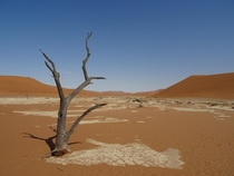 The Deadvlei in Nambia