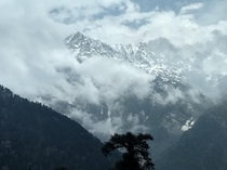 The Dhauladhar range from Triund top Himachal Pradesh India May