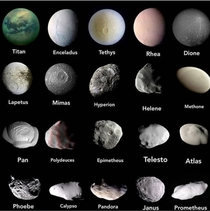 The different appearances of some of the moons of Saturn Saturn has over  moons and possibly more not discovered yet