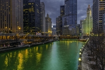 The dying of the river in Chicago Illinois earlier this year