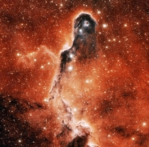 The Elephants Trunk Nebula or IC  Credit NASA Hubble