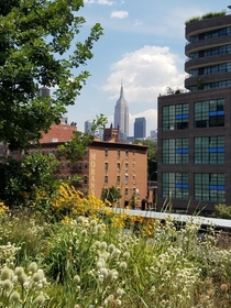 The Empire State Building from the High Line New York City  OC