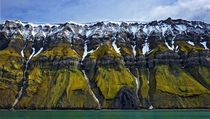 The eroded green cliffs and remnant snow of the cliffs of Svalbard  Photo by Stuart Chape