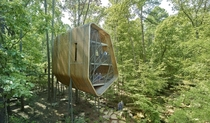The Evans Tree House  Modus Studio