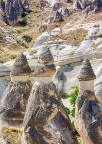 The fairy chimneys of Cappadocia Turkey