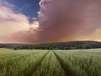 The fields and forest colliding in Wolfstein Germany
