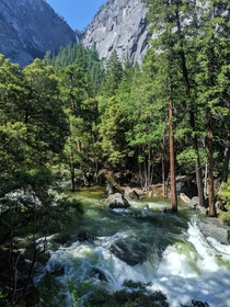 The fields were flooded and the falls were raging Yosemite CA