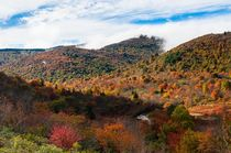 The first Autumn colors at Graveyard Fields North Carolina