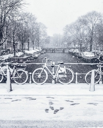 The first day of snow in Amsterdam  photo by gabrielguita