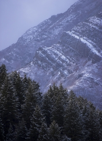 The first snowfall in Wasatch Mountains Utah