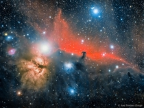 The Flame and Horse Head Nebulae