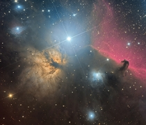 The Flame and Horsehead Nebulae in the Orion Constellation  Photographed by Jos Joaqun Prez