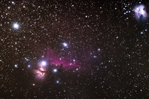 The Flame Horsehead and Running Man Nebulae