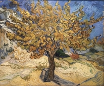 The Flaming Mulberry Tree Morus genus by Vincent Van Gogh at the Norton Simon Museum in Pasadena Its my favorite painting at the gallery
