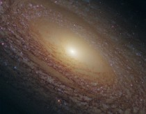 The Flocculent Spiral Galaxy NGC  -