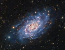 The flocculent spiral galaxy NGC  lies  million light-years away in the constellation Camelopardalis the Giraffe The term flocculent here means that its arms seem soft like tufts of wool