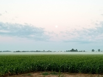 The fog lifting over our farm this morning and the moon setting OC