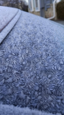 The frost on my car this morning x-post rmildlyinteresting