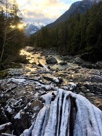 The frozen banks of the Kennedy River Vancouver Island Canada