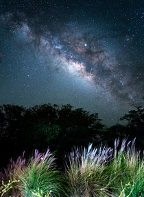 The Galactic Core from the Big Island
