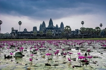 The giant temple complex of Angkor Wat Cambodia